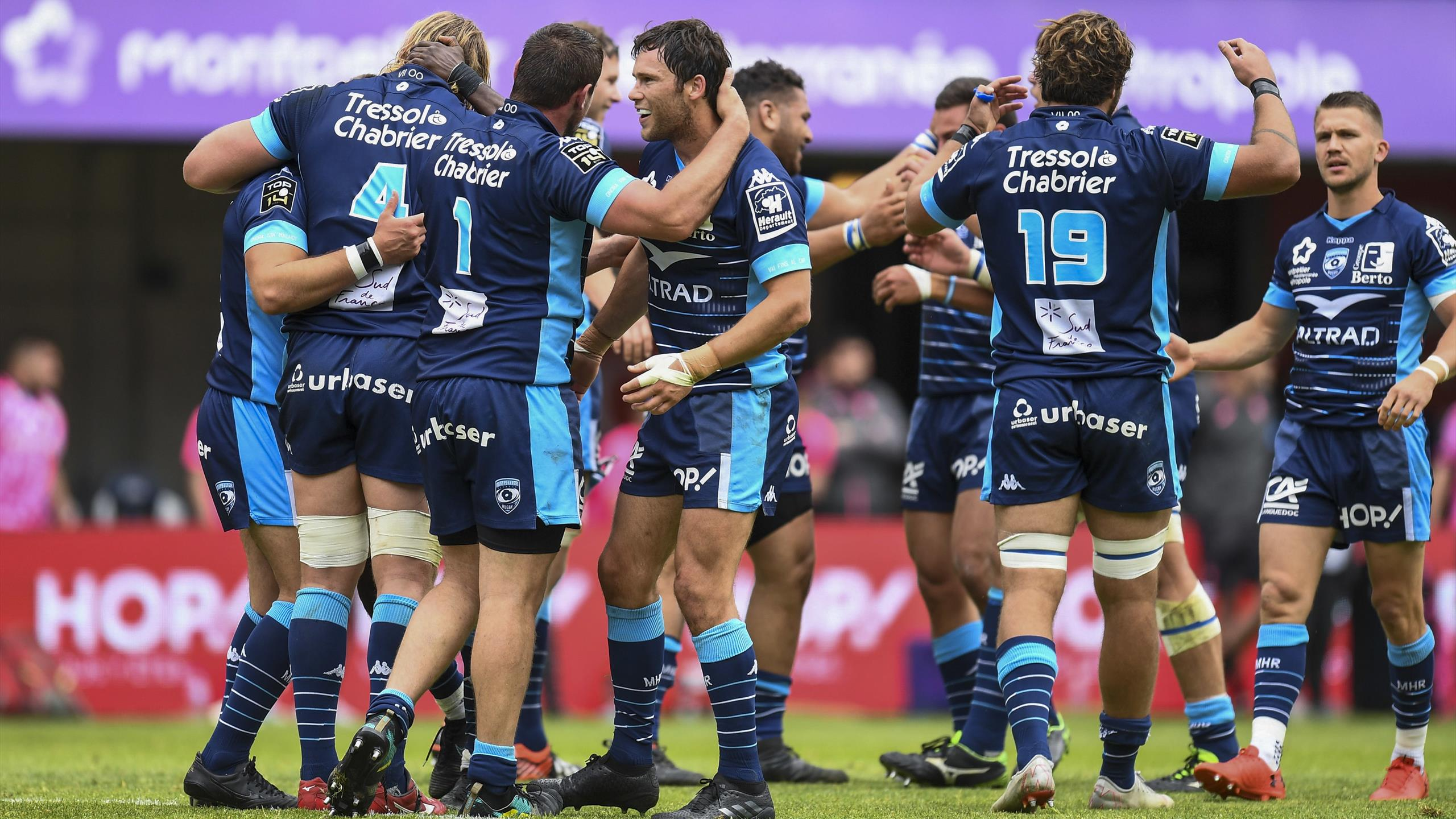 Montpellier Rugby Calendrier.Top 14 Montpellier Les Irreductibles Top 14 2018 2019